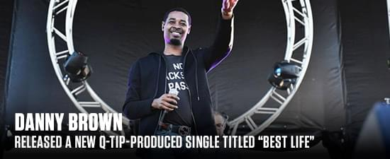 """Check Out Danny Brown's Q-Tip-Produced """"Best Life"""" Track"""